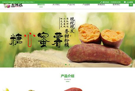 湖南鑫湘祁农产品有限公司(自适应)